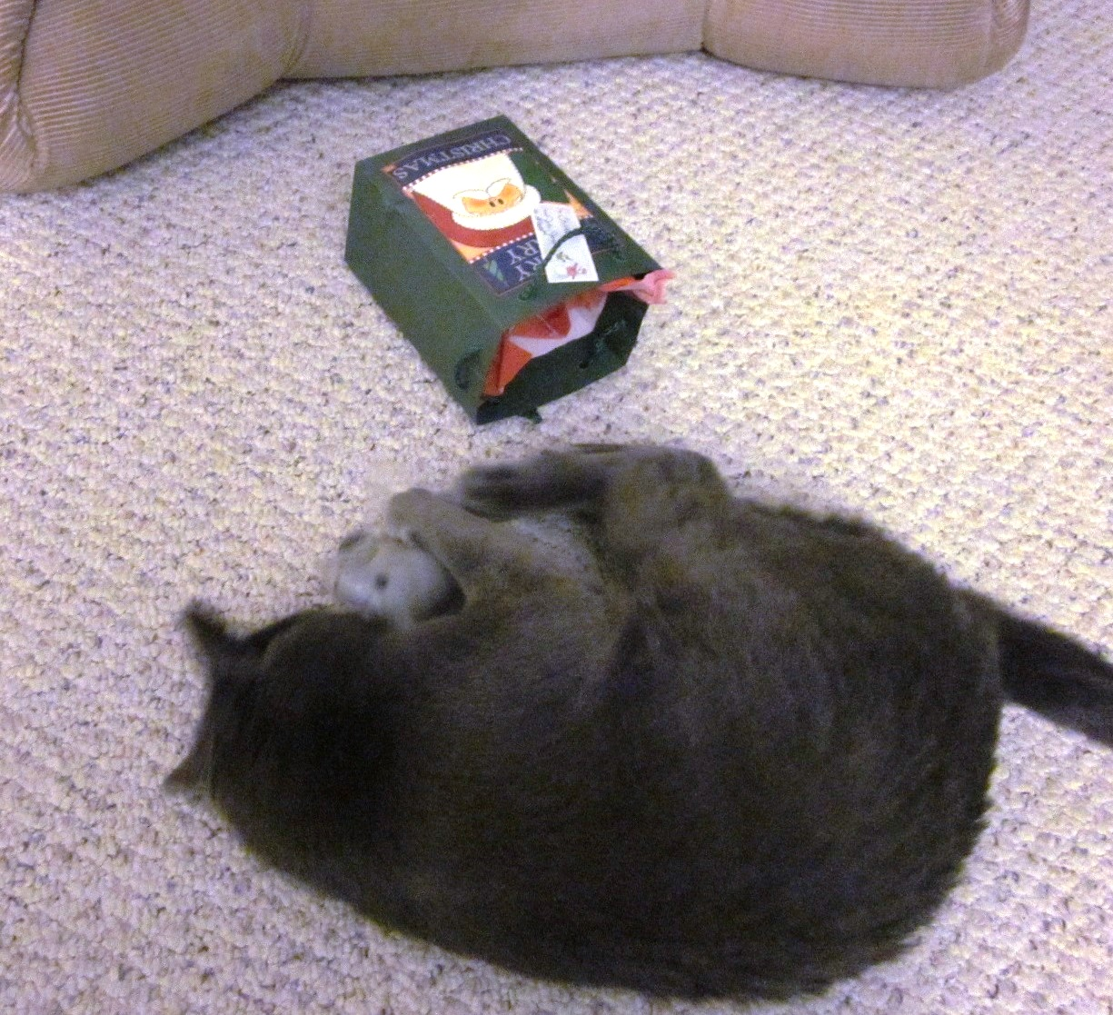I unwrapped the mouse all by myself!